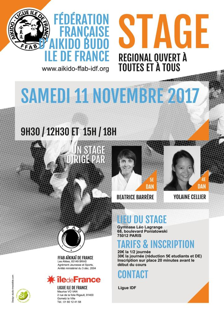 affiche stage ligue idf 11 11