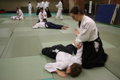 Stage_Aikido_2017